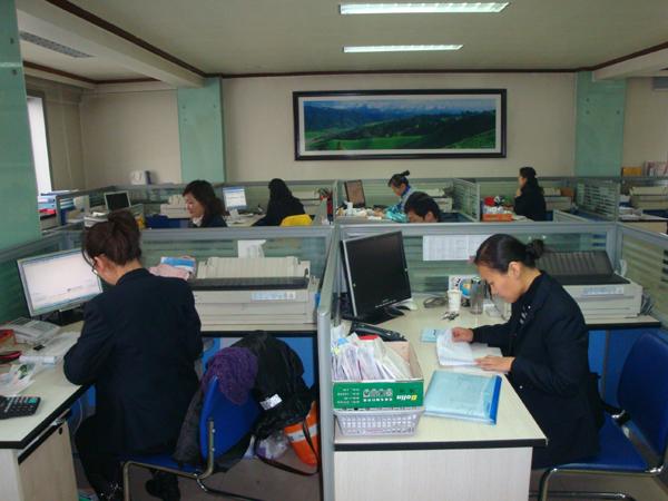 宽敞办公环境-业务部办公区